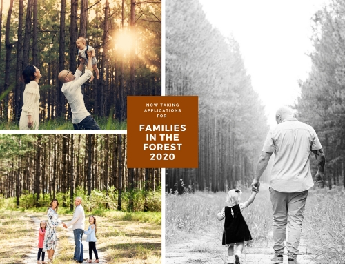 Families in the Forest 2020