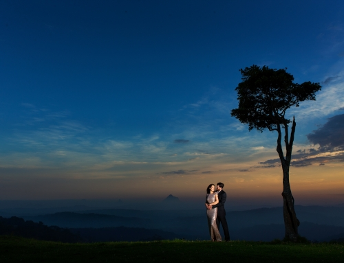 Elizabeth & Chris – Pre Wedding Portrait