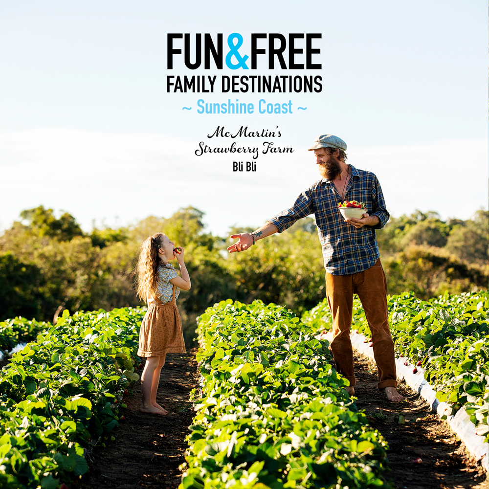 FUN + FREE Family Destination – Featuring One Tree Hill
