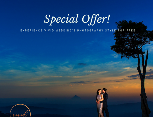EXPERIENCE VIVID WEDDING'S STYLE OF PHOTOGRAPHY FOR FREE!